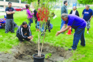 Tree planting ceremony honors students