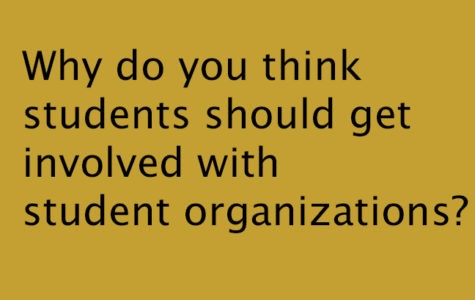 Why do you think students should get involved with student organizations?